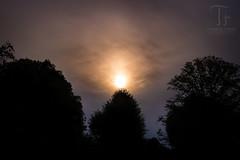 Late Dust Sun (Thomas TRENZ) Tags: nikon sonne sonnenuntergang tamron thomastrenz vienna clouds d600 dunst dust fullframe fx licht light sun sunset vollformat wien wolken