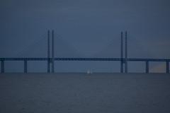 Öresund Blues (Explore) (Rudi Pauwels) Tags: fs160918 fotosondag malmö oresundsbron sundet bridge blue blues bluehour tamron 18270mm tamron18270mm nikon d7100 nikond7100 stamning
