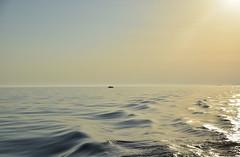 Liquid gold (Sizun Eye) Tags: croatia croatie chorwacja adriatic sea adriatique mer sunsetlight sunset boat bateau reflections reflet adriatyk europedusud europe europa southerneurope sizuneye nikond750 d750 tamron2470mmf28 tamron gold goldenhour nature seascape