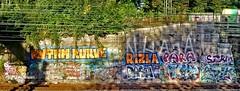 - (txmx 2) Tags: hamburg graffiti trainwindow rizla whitetagsrobottags whitetagsspamtags