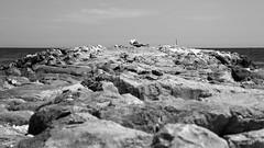 sul molo (point camera) Tags: molo sun blackandewhite biancoenero monochrome monotone monocolore beach sea seaside mare summer passerella