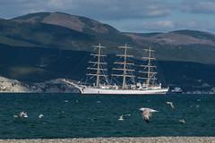 STS Nadezhda (DocksideColors) Tags: tallship tallships2016 sea sail adventure sts nadezhda ship wind windjammer regatta scfblackseatallshipsregatta2016 tallships sailing training nikon d610