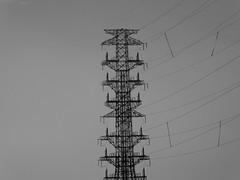 Huge pylon (seikinsou) Tags: japan spring omiya kanazawa shinkansen jr railway train travel hakutaka windowseat pylon electricity cable power bw