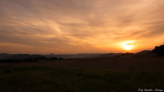 Nice Sunset (snapshot156) Tags: august morning light nordhessen hessen germany werrameisnerkreis color sun sunrise eschwege