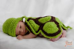 Newbornshooting von Anna (djaneschphoto) Tags: baby liebe love studio neugeborenes newborn mdchen maedchen girl schildkrte turtle grn green gestrickt striped
