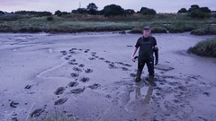 Mud explorer in action! (essex_mud_explorer) Tags: waders watstiefel rubber boots thigh cuissardes gummistiefel hunter gates coarsefisher black mud muddy creek estuary tidal mudflats saltmarshes saltmarsh footprints bootprints trail