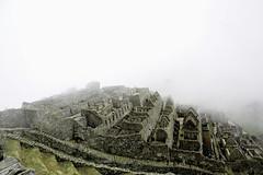 (murdockramone) Tags: peru llama animal nature landscape machu picchu