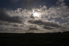 Cloudy sky , #Landscape , #clouds , #field , #Farmland , #mothernature , #delicate , #Cloudscape , #beautiful , #splendid , #Bokeh , #photoart , #sunshine , #wanderlust , #cornfields , #Summer , #perspective , #elegant , #Exposure , #Garden , #contrast , (jwzw@ymail.com) Tags: cloudy sky landscape clouds field farmland mothernature delicate cloudscape beautiful splendid bokeh photoart sunshine wanderlust cornfields summer perspective elegant exposure garden contrast photography nature outdoor view color light composition dramatic photographer travel