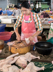 DSC_0732a (jiangliu24680) Tags: myanmar goldtriangle