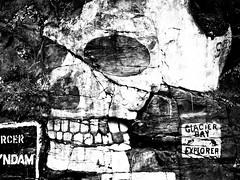 Writings On The Wall (LornaTaylor) Tags: lornataylor taylorimagesca alaska copyright2008lornataylor lornataylorphotography skull writingsonthewall blackandwhite