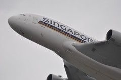 [11:13] SQ0317 LHR-SIN. (A380spotter) Tags: london heathrow belly airbus a380 departure sq takeoff 800 sia lhr singaporeairlines egll climbout 09r lhrsin 9vskm runway09r sq0317 msn0065