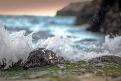 Come può lo scoglio ..... (albert23it) Tags: 6 zeiss marina 50mm mare sony contax castro di acquaviva salento puglia planar onda marittima nex scoglio insenatura panoramafotográfico nex6 sonenex sonynex6