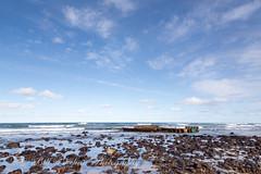 _A5B5213-4.jpg (w11buc) Tags: sea beach scotland waves aberdeenshire marjorie stcombs