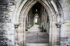 "Tintern Abbey • <a style=""font-size:0.8em;"" href=""http://www.flickr.com/photos/32236014@N07/8635107651/"" target=""_blank"">View on Flickr</a>"