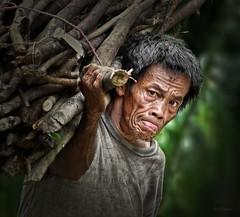 Hard Life (Grandpa@50) Tags: herowinner ultraherowinner thepinnaclehof tphofweek199 kanchenjungachallengewinner shchofwinner friendlychallenges