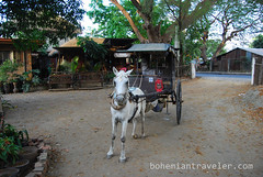 calesa horse drawn cart (BohemianTraveler) Tags: old city horse heritage architecture island town site asia pacific district philippines colonial chinese unesco mexican spanish filipino sur vigan ilocos kalesa luzon calesa mestizo