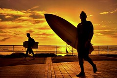 Silhouette of Surfers (Explore) (missgeok) Tags: lighting light two sky orange black beach water colors sport yellow backlight clouds composition sunrise fence walking spectacular focus scenery warm mood colours angle artistic cloudy outdoor pov candid sydney silhouettes vivid australia explore frame surfboard surfers colourful framing framework watersports outline tones 2people backlighting cronulla againstthesun lightshadows warmcolours cronullabeach goldentones colourtones nikond90 2surfers silhouetteandcolours silhouetteofsurfers