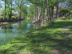 Guadalupe River: James Kiehl River Bend Park: East of Comfort, Texas (TX) (Floyd Muad'Dib) Tags: trees tree river geotagged star texas state tx lone cypress guadalupe floyd muaddib cypresses guadaluperiver lonestarstate floydmuaddib