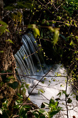 Waterfall (Sabrina C. Fotografie) Tags: light water leaves gardens foglie backlight 50mm waterfall f14 acqua luce controluce giardini cascata villareale nikond90