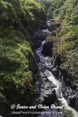 Oheo Gulch on the Road to Hana JN074214 (JaniceNolan_braud) Tags: hawaii waterfall rainforest stream maui sevensacredpools roadtohana oheogulch