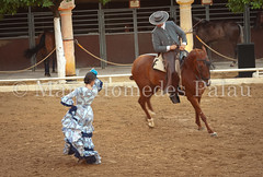MHP_120622_10748.jpg (marc_homedes) Tags: show travel blue horse woman inspiration color history tourism colors girl beautiful beauty horizontal fun outside outdoors photography photo dance nice spain ballerina colorful pretty place shot dancing image famous scenic picture tourist andalucia historic unesco spanish cordoba andalusia flamenco alandalus traveldestinations colorimage famousplace worldlocations historicalfinearts