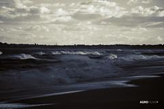 Frio en el  Atlantico Sur - Cold in the South Atlantic (Agrofilms) Tags: ocean sun cold sol beach uruguay sand nikon surf waves south playa oxido atlantic arena sur olas frio oceano atlantico oxide rompiente josignacio agrofilms
