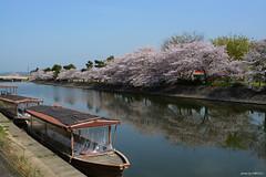 () Tags: kyoto  uji
