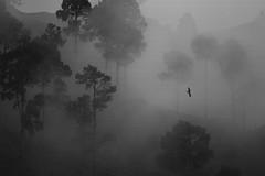 Clouds (Azad Kashmir) (M K@MRAN) Tags: canon kashmir kamran azad