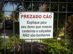 Prezado Co (Paulo Cedres) Tags: dog co dogs sign perro cachorro perros cartaz cartel cartazes flickrandroidapp:filter=tokyo