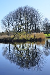Reflection (Steven H Scott) Tags: park trees reflection nikon fen lowestoft 18200vr thebestofday gnneniyisi d7000 nikonflickraward mygearandme