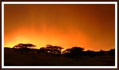 Sonnenuntergang im Regen , sunset, Coucher de soleil (tor-falke) Tags: africa sunset tree sunrise landscape sundown african safari land afrika paysage landschaft namibia arbre baum afrique namibie africalandscape torfalke flickrtorfalke