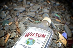 """""""That's All"""" (Wires In The Walls) Tags: trash rotgut bottle globe connecticut label ct whiskey packaging wilson whisky discarded derby gravel continents cigarettebutt 2013"""