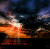 Bipolair sun (Frank ) Tags: ocean lighting trees light sunset sea sky beach water night clouds canon fun island evening sand europe topf300 awsome shore topf150 bushes topf100 sunbeam topf200 sunray daysend profoto watmooi mrtungsten62 frankvandongen nekstime 11136367256