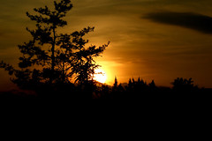 Good night Sun (FRED KING 1) Tags: sunset sun sunrise sunny natureplus