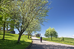 Path to the Observatory (Grant_R) Tags: scotland edinburgh blossom bluesky observatory caltonhill grantr