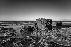 M1150826-Edit.jpg (meerecinaus) Tags: longreef beach collaroy newsouthwales australia au