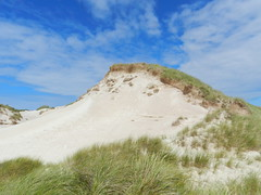 Sand Dune, Faraid Head, Balnakeil Bay, Durness, North West Sutherland, July 2016 (allanmaciver) Tags: sand dune north west sutherland balnakeil durness beach bay faraid head weather sky blue warm sunny afternoon white height beauty admire enjoy delight grass wander allanmaciver