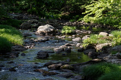 Gently down the stream (trochford) Tags: brook stream creek rocks rocky flow rippled water nature outdoor beardbrook hillsboroughnh nh newhampshire newengland usa canon eos