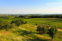 Chianti, Toscana
