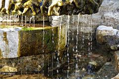 The well - (rotraud_71) Tags: well brunnen water stones summer passlueg mariabrunneck salzburgerland