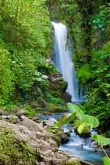 DSC_0826 (errolviquez) Tags: familia hijos paseos costa rica bela ja naturaleza catarata sobrinos
