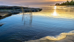 Painting in Gold (Peter Vestin) Tags: nikondf sigma24mmf14dghsmart siruin3204x siruik30x adobecreativecloudphotography rggrdsviken hammar vrmland sweden vnern nature landscape seascape sunset