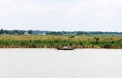 IMG_2929 [Original Resolution] (Ranadipam Basu) Tags: boat river meghna