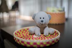 Childhood (ruimc77) Tags: nikon d810 nikkor afs 35mm f18g dx prime lens childhood toy brinquedo infncia juguete infancia niez ninez urso oso bear color bokeh dof