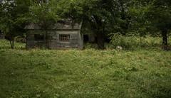 Fairlane Farm-26 (hiker083) Tags: abandoned farmhouse decay decrepit derelict cars vacant oncewashome