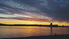 This is a beautiful city.  #cardiff #cardiffbay #barrage #clouds #colour #sky #water #sunset #evening #martindaviesphoto #photography #photooftheday #potd #landscape (Martin Davies - Photographer) Tags: landscape colour martindaviesphoto evening barrage photography clouds sky water cardiff potd cardiffbay sunset photooftheday