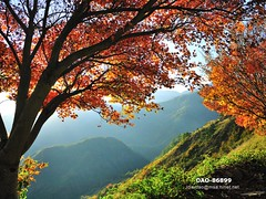 DAO-86899 (Chen Liang Dao  hyperphoto) Tags:   taiwan
