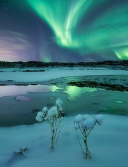 """""""Frost rsir"""" (ArnarKristjans_photography) Tags: fantasticnature natgeo nature natural skies sky auroraboreale auroraborealis winter ice iceland northernlights nordic night nightscape reflections reflection green canon lago lake landscapes landscape photography photoshoot phenomena photographer space amazing europe traveling travel trip tourism"""