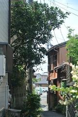 ise192 (tanayan) Tags: road street alley mie ise japan nikon j1 kawasaki