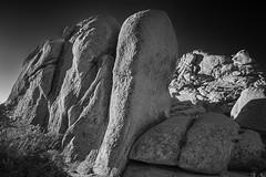 Stacks (DPRPhoto) Tags: echorock joshuatreenationalpark rockformations desertlandscape